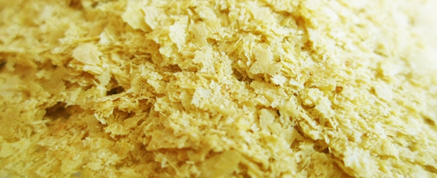 What is Nutritional Yeast (Nooch)?